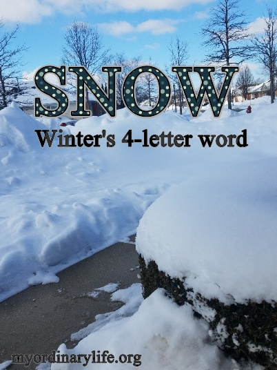 snow_winter's_4-letter_word